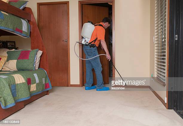 Professional Spraying Carpet