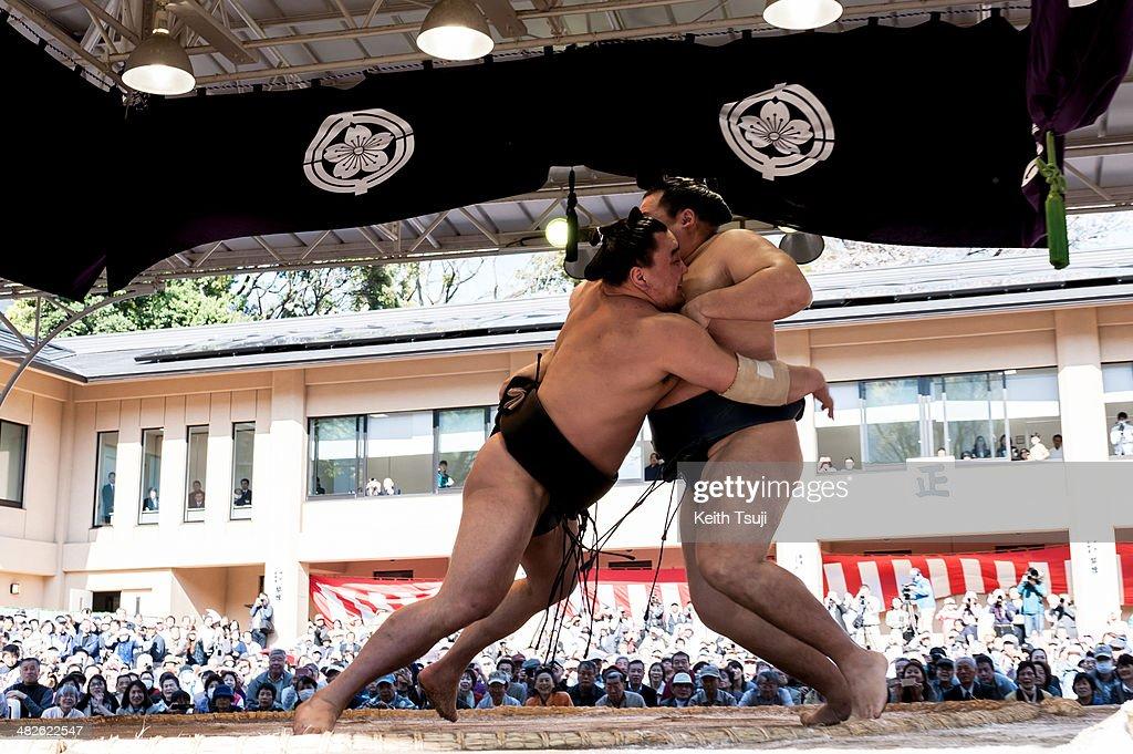 Professional sumo wrestler Harumafuji Kohei pushes his opponent Kakuryu Rikisaburo during the Ceremonial Sumo Tournament or Honozumo at the Yasukuni...