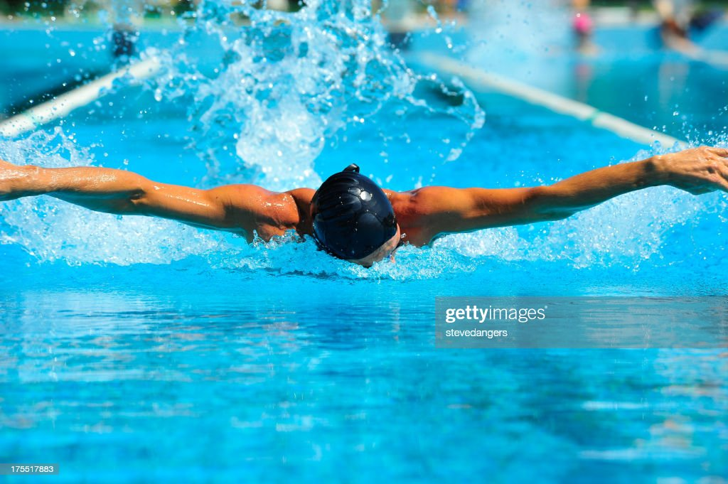 Professional nuoto in piscina : Foto stock