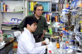 Professor Shibasaki Managed To Work On A Molecule Of Badiane Base Of The Famous Tamiflu Used To Cure The Avian Flu In Tokyo Japan On March 04 2006...