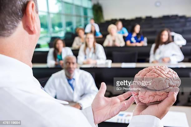 Professor teaching nursing or medical students about human brain