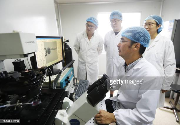 Professor Zhao Xin and his team watch the screen as the robot demonstrates somatic cell nuclear transfer on July 4 2017 in Tianjin China World's...