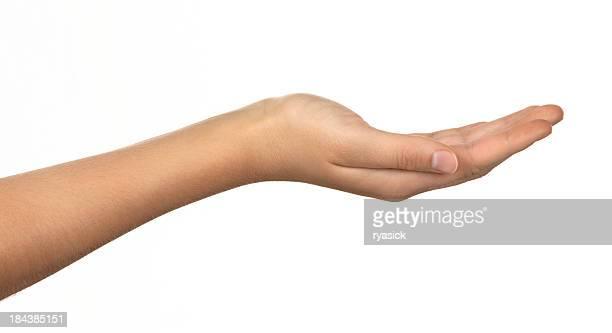 Profilo di femmina Mani a coppa isolato su bianco