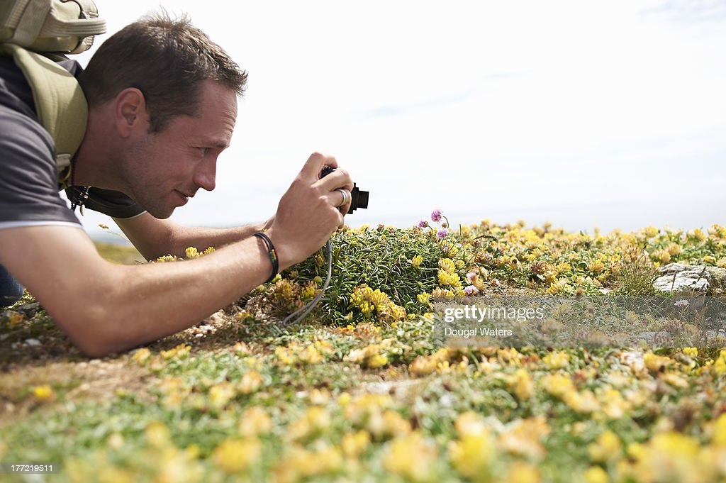 Profile of man taking picture of flower. : Stock Photo