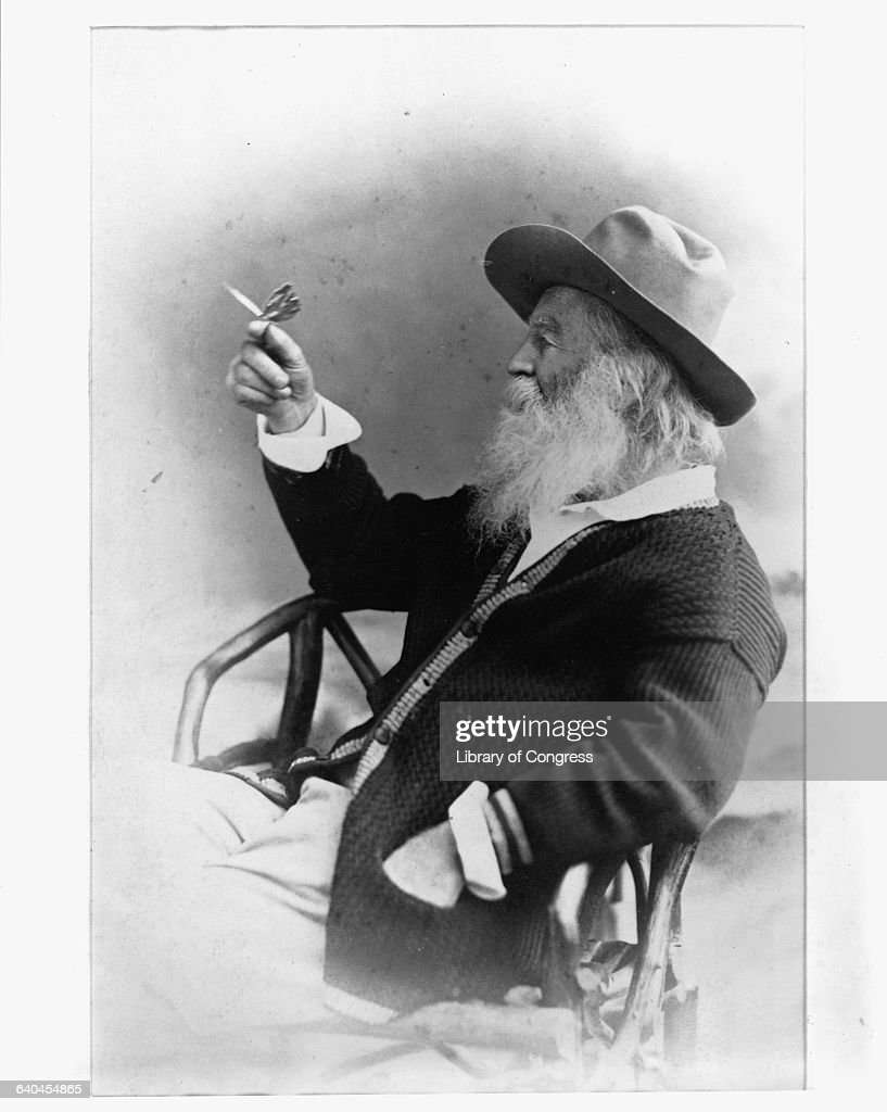 A profile portrait of poet Walt Whitman holding a butterfly. Whitman's distinctive, frank poetry met with misunderstanding and adverse criticism for many years, but by this time his volume Leaves of Grass (originally published in 1855) had gained an appreciative audience.