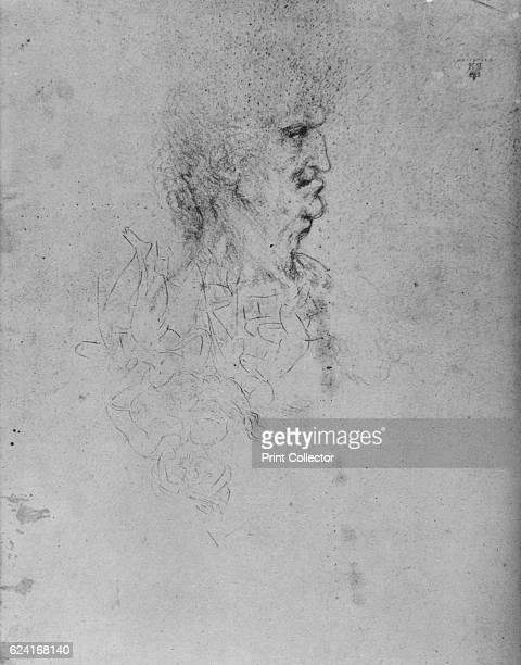 Profile to the Left of an Old Man' c1480 From The Drawings of Leonardo da Vinci [Reynal Hitchcock New York 1945] Artist Leonardo da Vinci