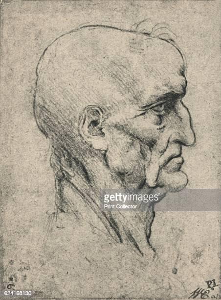 Profile to the Right of an Elderly Bald Man c1480 From The Drawings of Leonardo da Vinci [Reynal Hitchcock New York 1945] Artist Leonardo da Vinci