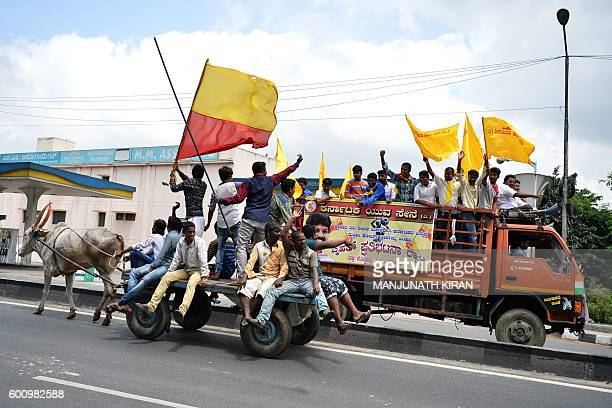 ProKarnataka activists wave the Karnataka flag as they ride on an oxdrawn cart past others on a truck during a statewide strike in Bangalore on...