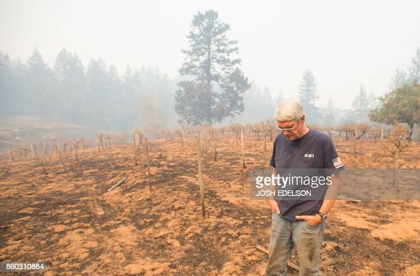 TOPSHOT Property owner Chris Schrobilgen stands in his neighbor's burned grape vineyard in Calistoga California on October 11 2017 More than 200 fire...