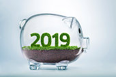 2019 is a good year for business. Grass growing in the shape of year 2019, inside a transparent piggy bank.