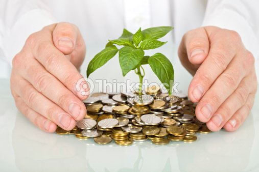 Protecting a good investment and making money concept : Stock Photo