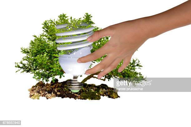 Protection  environment  by energy saving concept . Eco home in hand , light bulb , tree , Ecology concept .