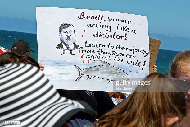 A protester against shark culling in the Western Australian Coast line holds up a sign at Cottesloe Beach on February 1 2014 in Perth Australia The...