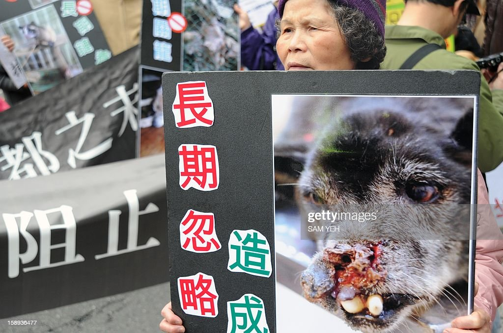 A protester displays a picture of an abused dog during a demonstration in front of the Taiwan government's agriculature council in Taipei on January 4, 2013. The Taiwan Society for the Prevention of Cruelty to Animals demanded the agriculture ministry stop boycotting an animal protection law that the parliament is scheduled to review later this month and demanded the government stop putting down stray animals. AFP PHOTO / Sam Yeh