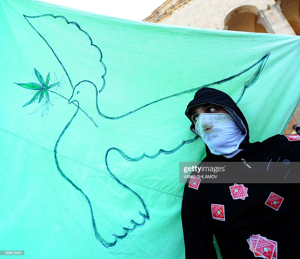 A protester holds a green flag with a peace dove carrying a cannabis leaf during a rally for cannabis decriminalization in front of the former parliament building in Tbilisi on June 2, 2013. AFP PHOTO / VANO SHLAMOV