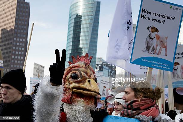 A protester wears a chicken mask during a protest on January 18 2014 in Berlin GermanySeveral thousand demonstrators attended the march in protest...