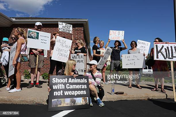 Protesters call attention to the alleged poaching of Cecil the lion in the parking lot of Dr Walter Palmer's River Bluff Dental Clinic on July 29...