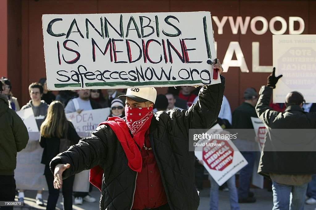 Protesters demonstrate on the day after Drug Enforcement Administration (DEA) raids shut down 11 medical marijuana clinics around Los Angeles County on January 18, 2007 in West Hollywood, California. Federal authorities do not recognize the California law passed by voters in 1996 known as Proposition 215 that allows some people to grow and smoke the normally illegal herb for medicinal purposes. The raids come in the wake of last week?s vote by the Los Angeles Police Commission to support a moratorium on new marijuana outlets and Police Chief William Bratton's pledge to work with federal authorities to prosecute businesses in violation of the federal prohibition. Raids outside of West Hollywood occurred in the San Fernando Valley, Hollywood, and Venice, California.