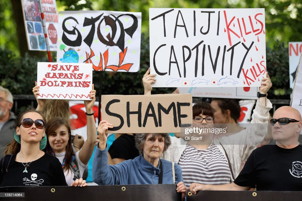 Protesters demonstrate outside the Japanese embassy against Japan's hunting of sea mammals on September 1 2011 in London England The protesters are...