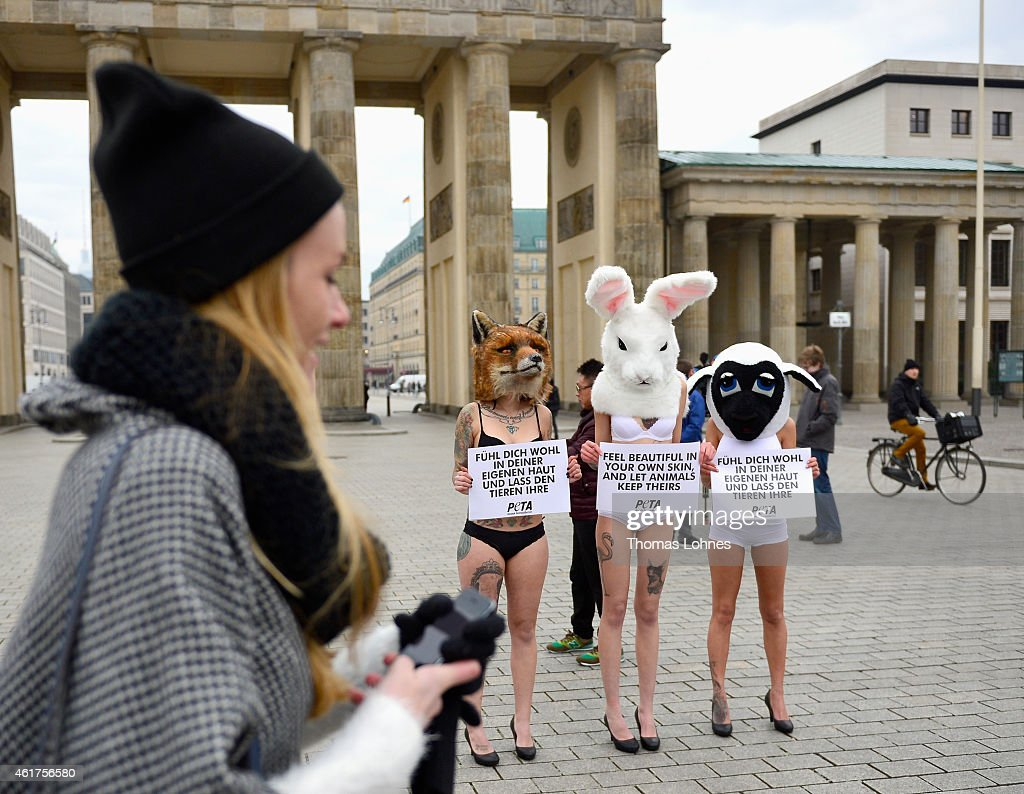 Animals in the fashion industry