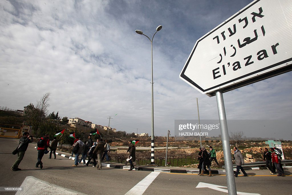 Protesters hold Palestinian flags as they arrive to block the entrance of the El'azar Israeli settlement, south of the West Bank town of Bethlehem, to protest against the Israeli occupation and ask for the prisoners release on January 25, 2013.