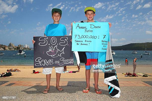 Protesters hold signage against the catching and killing of sharks in Western Australia at Manly Beach on February 1 2014 in Sydney Australia The...