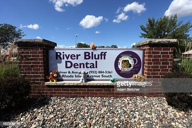Protesters place stuffed animals on the sign of Dr Walter Palmer's River Bluff Dental Clinic to call attention to the alleged poaching of Cecil the...