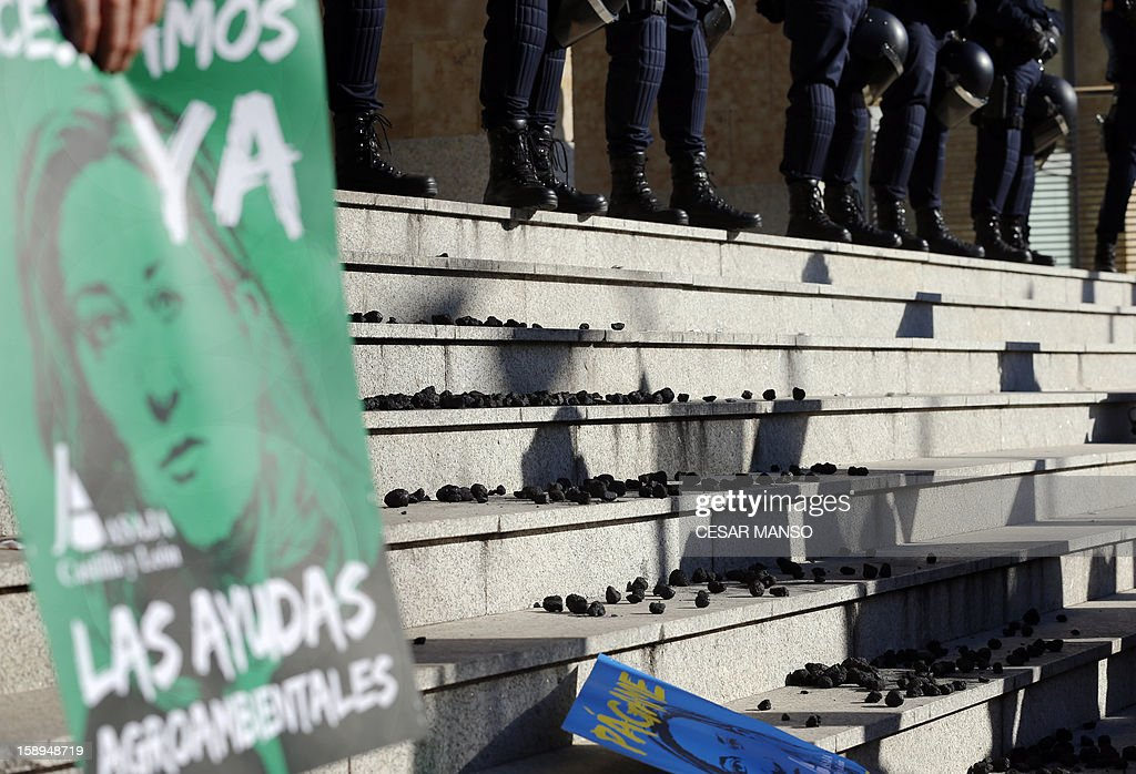 Protesters spill coal in front of police officers at Castilla and Leon's Agricultural Ministry during a demonstration against aid cuts in the agricultural sector in Valladolid on January 4, 2013.