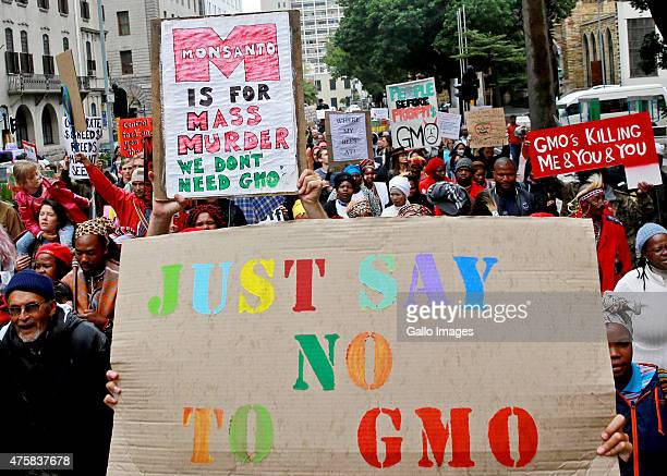 Protesters take part in a march against the American multinational agrochemical and agricultural biotechnology corporation Monsanto and genetically...