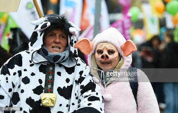 Protesters wear animal costumes while taking part in a demonstration with the motto 'we are fed up' against industrial farming on the sidelines of...