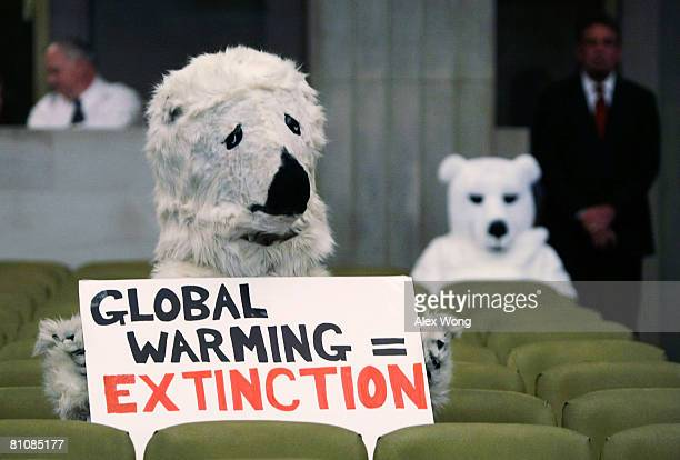 Protesters wear polar bear costumes as US Secretary of the Interior Dirk Kempthorne speaks during a news conference May 14 2008 at the Department of...