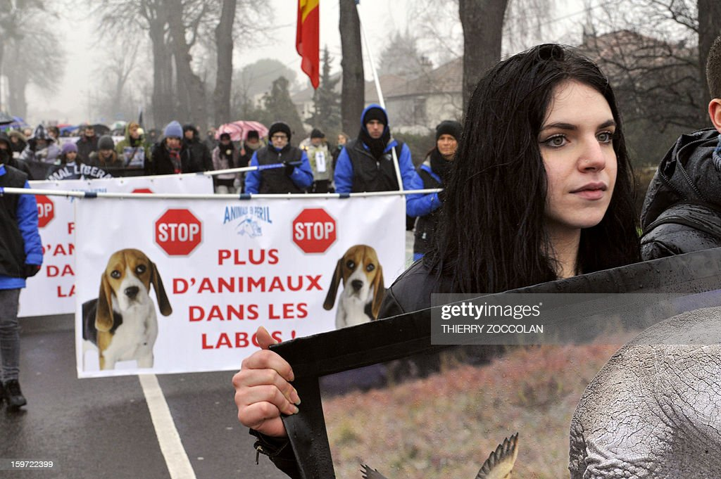 Protestors coming from differents European countries hold placards and banners as they take part to a 'No Harlan' demonstration against the Harlan Sprague Dawley Inc Environ, a leading supplier of animals and other services to laboratories for the purposes of testing on January 19, 2013 in Gannat, Central France. The Harlan group breeds beagles canines and mice for laboratories. 'No Harlan' demonstrations take place today in United Kingdom, Italy, Croatia and Lithuania. Banners read 'Stop breeding animals for labs'.