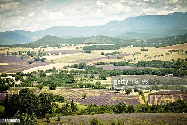 landscape- Provence