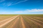 Exploring Gobi Desert and Mongolian culture in the heart of Mongolia.
