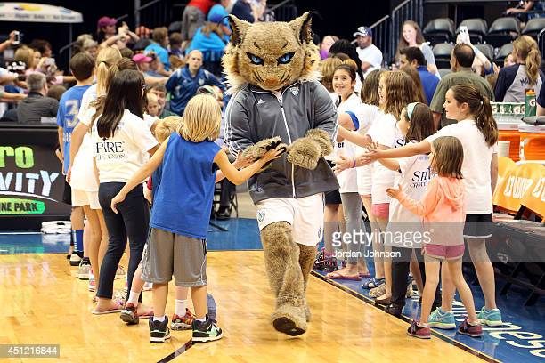 Prowl mascot of the Minnesota Lynx runs out before the game against the Indiana Fever during the WNBA game on June 22 2014 at Target Center in...