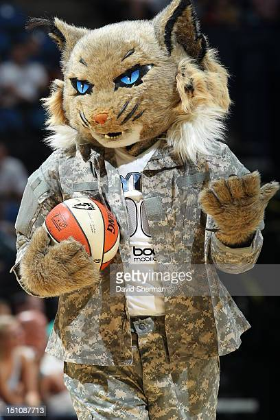 Prowl of the Minnesota Lynx wears camouflage in honor of military night during the WNBA game between the Minnesota Lynx and the Tulsa Shock on August...