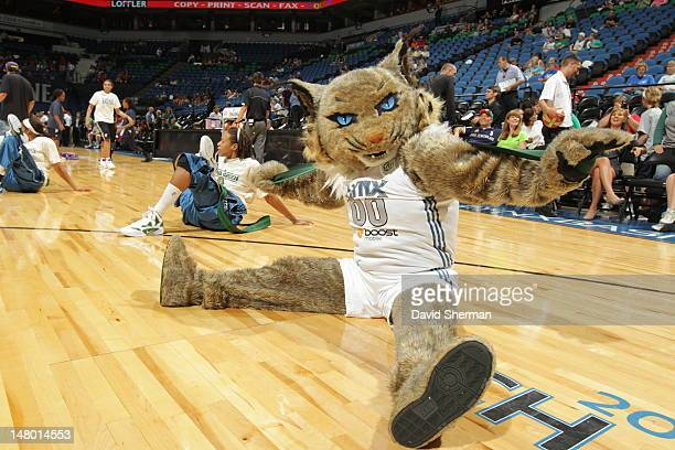 Prowl stretches with the Minnesota Lynx players before the game against the Connecticut Sun on July 7 2012 at Target Center in Minneapolis Minnesota...