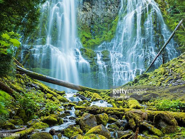 Proxy-Wasserfall, der Willamette National Forest, Central Oregon