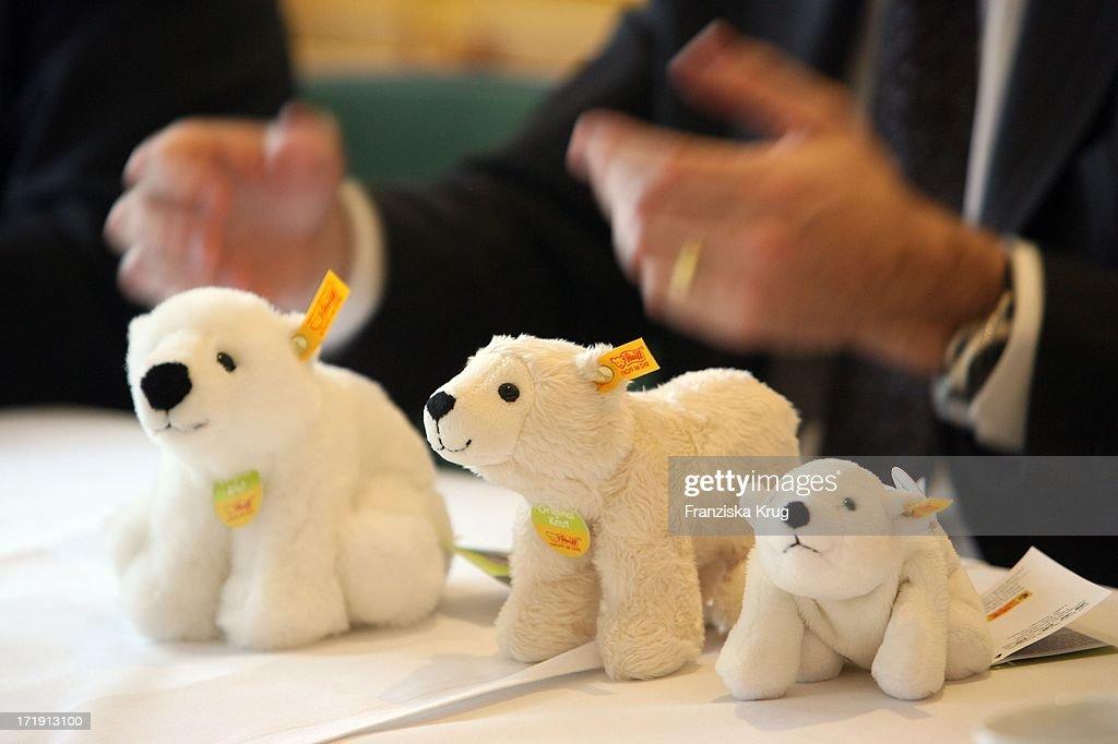 Präsentation Der Ersten 'Knut Mit Knopf Im Ohr' Sonderkollektion Der Margarete Steiff Gmbh Im Berliner Zoo