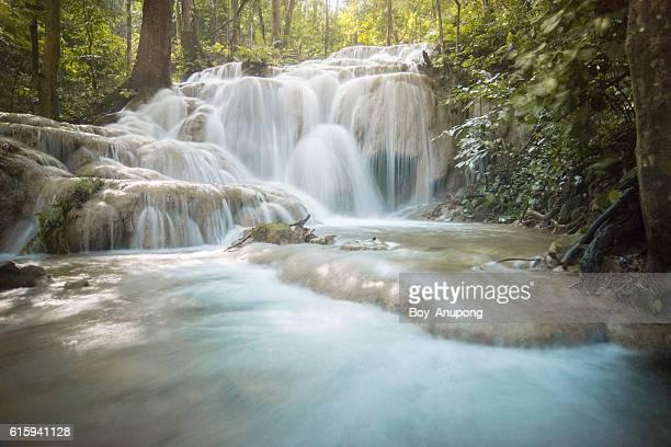 Pu Kaeng waterfall in Chiangrai province of Thailand.
