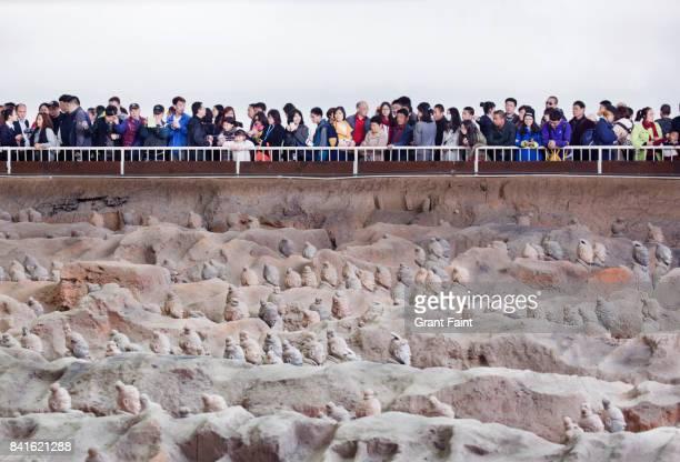 Public enjoying terracotta warriors.