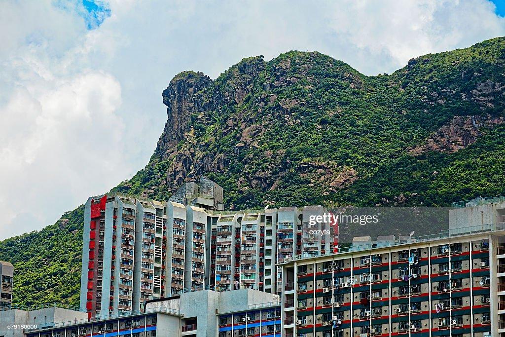 Public housing under lion rock mountain