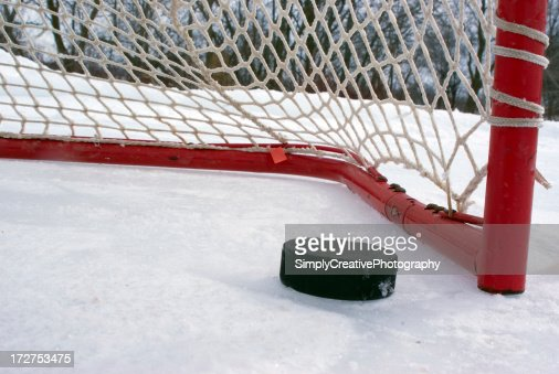 Puck on the Goal Line