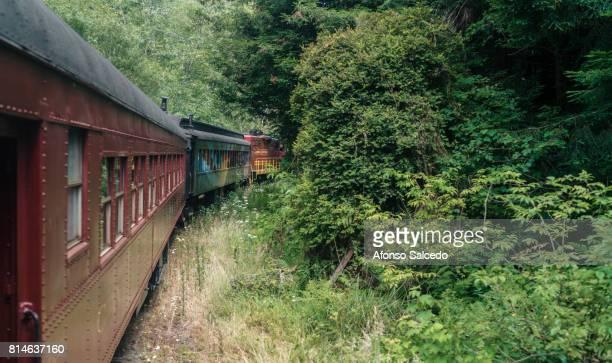 Pudding Creek Train through Estuary