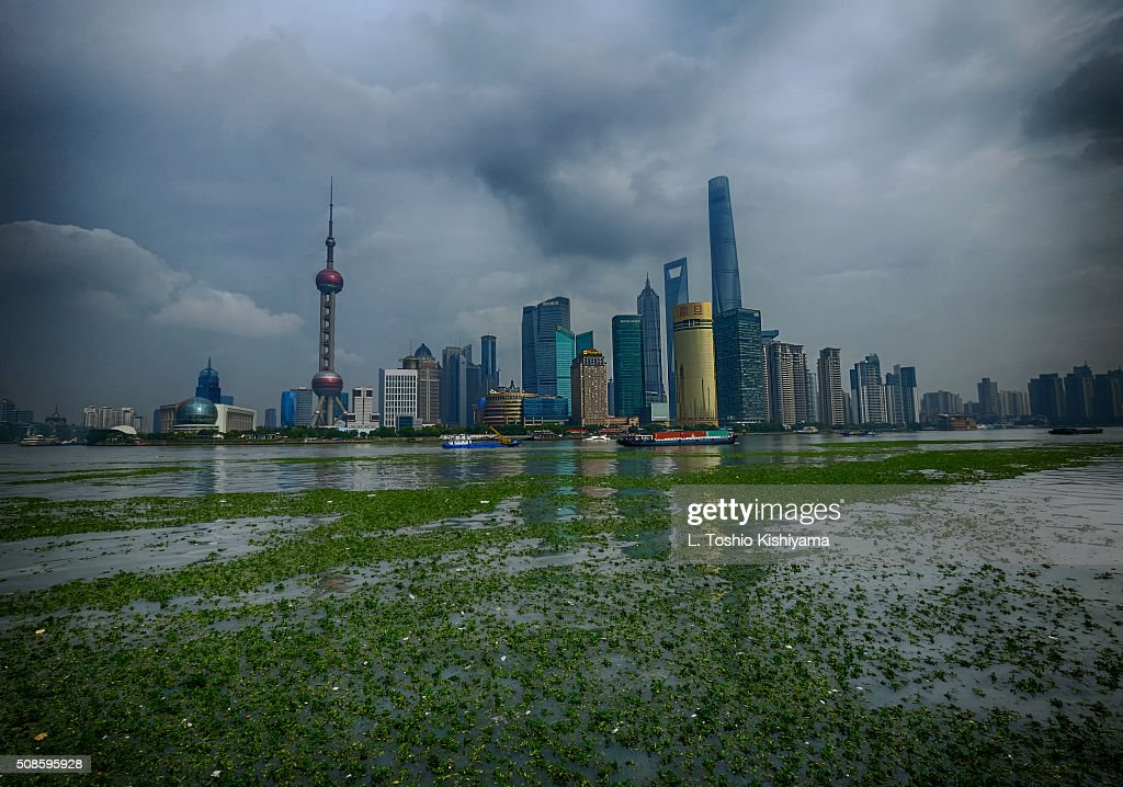 Pudong District of Shanghai, China : Stock-Foto