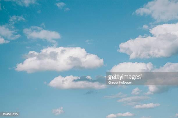 Puffy Clouds in a Blue Sky