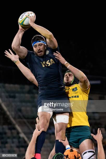 Pumas flanker Javier Ortega Desio and Wallabies lock Adam Coleman go up for the ball at the 2017 Rugby Championship game between the Australia...