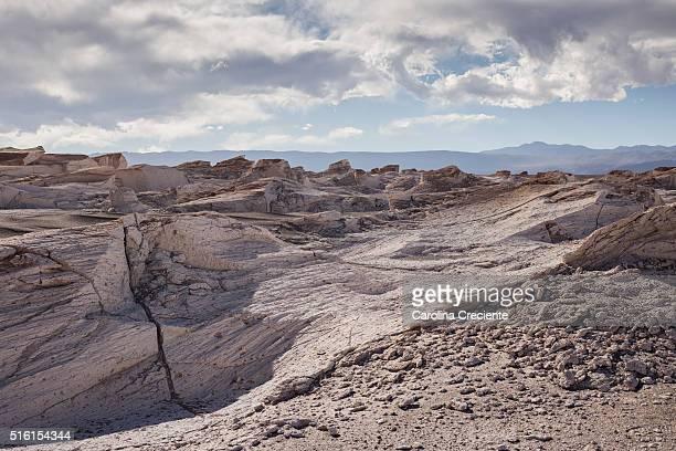 Pumice stone field