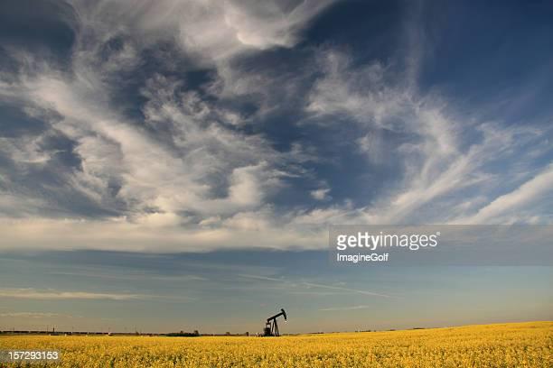 Pumpjack sur les plaines