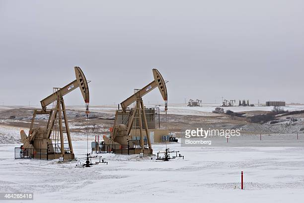 Pumpjacks operate at an oil well in Williston North Dakota US on Sunday Feb 15 2015 A plunge in global energy prices that has put some North Dakota...